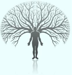 A félelem ellenpólusa az ősbizalom