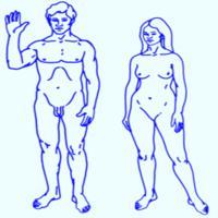 Weöres Sándor: Nő és férfi