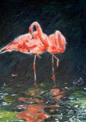 Nyéki Andrea: Flamingók